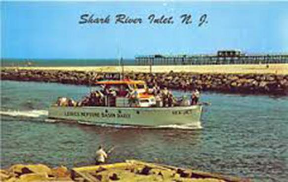 shark river2